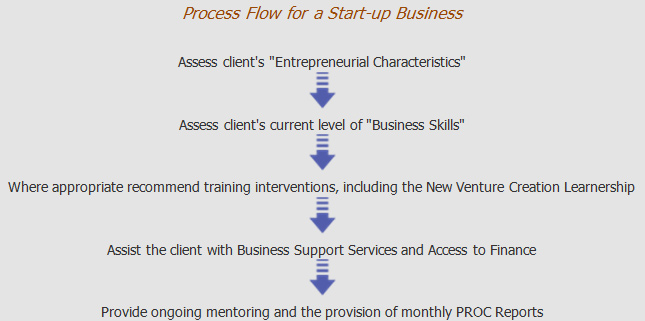 process-flow-for-a-start-up-business