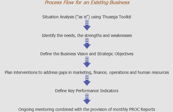 process-flow-for-an-existing-business